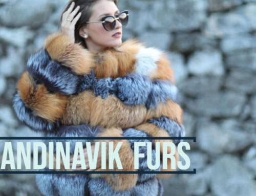 Skandinavik Furs, tradition et modernité