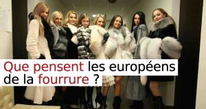 que-pensent-les-europeens-de-la-fourrure